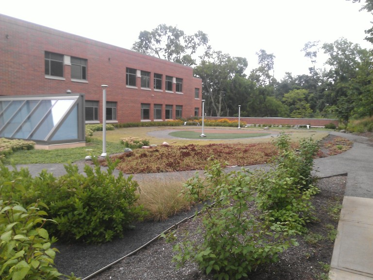 Clark Montessori Intensive Green Roof